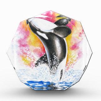 Beautiful Orca Whale Breaching Award