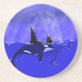 Beautiful Orca Whales Coaster