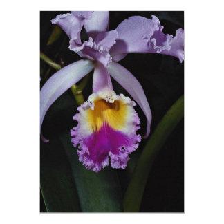 Beautiful Orchid, cattleya trianae (columbia) Card