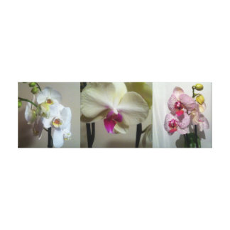 beautiful orchid design 3 colou canvas 36x 12 x1.5