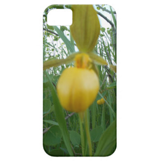 Beautiful Orchid iPhone Case iPhone 5 Cover