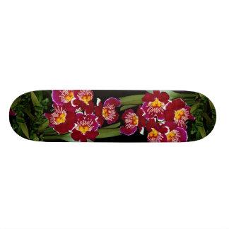 Beautiful Orchid, miltonia hybrid Skate Deck