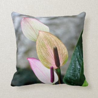 Beautiful Orchid Pillow