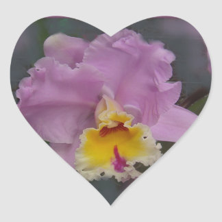 Beautiful Orchid Stickers