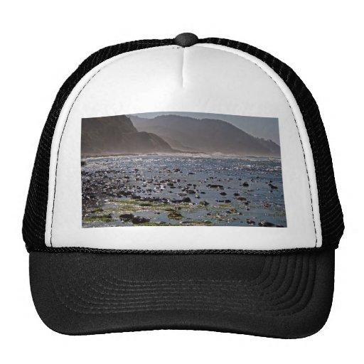 Beautiful Oregon Coast Mesh Hats