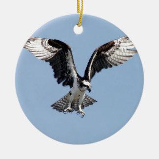 Beautiful Osprey bird Searching for prey Ceramic Ornament