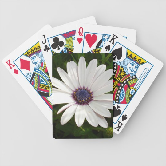 Beautiful Osteospermum White Daisy Bicycle Playing Cards