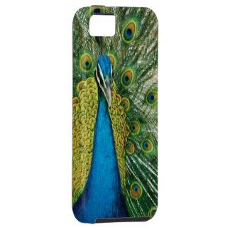 Beautiful Ostrich! iPhone SE/5/5s Case