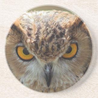 Beautiful Owl Drink Coaster
