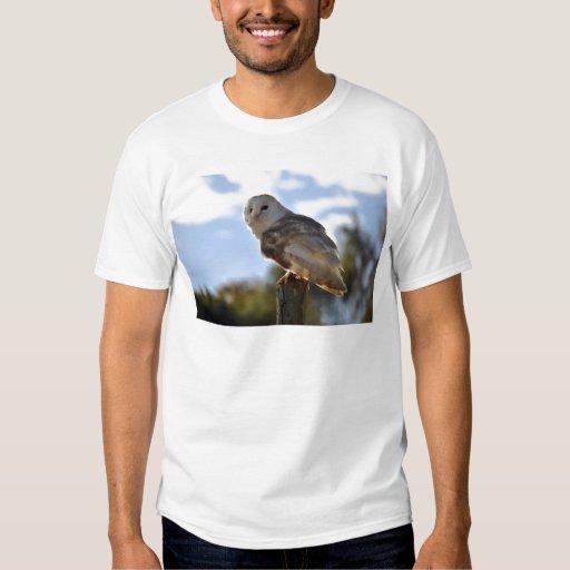 Beautiful Owl T Shirt
