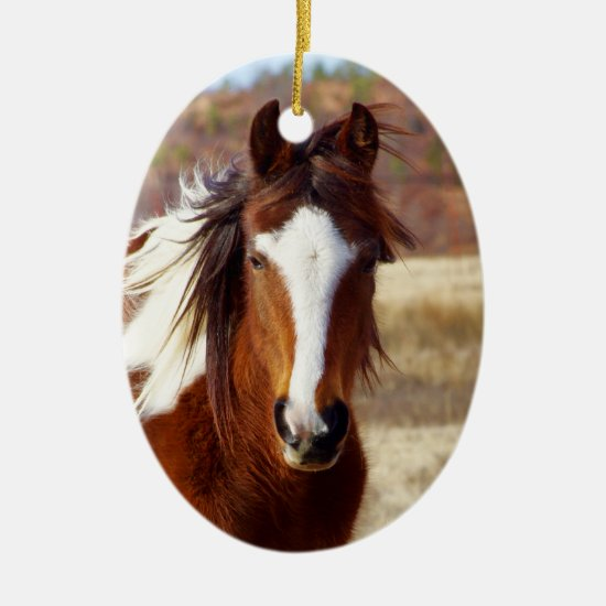 Beautiful Paint Horse Christmas Ornament