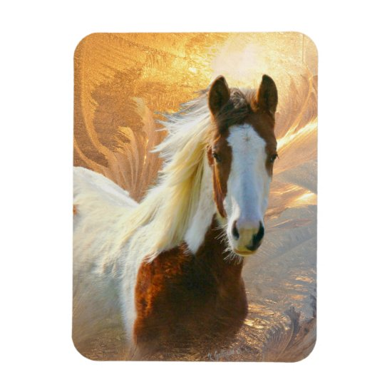 Beautiful Paint Horse Gold Magnets