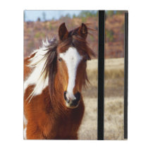 Beautiful Paint Horse iPad Folio Case