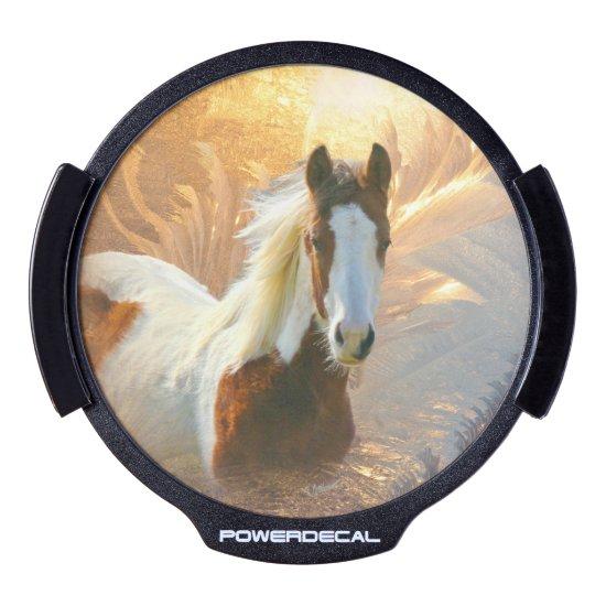Beautiful Paint Horse LED Window Decal