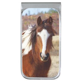 Beautiful Paint Horse Money Clip