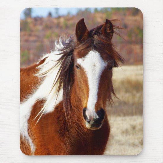 Beautiful Paint Horse Mousepad