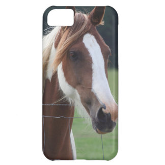 Beautiful Paint Pinto Horse at fence iPhone 5C Case