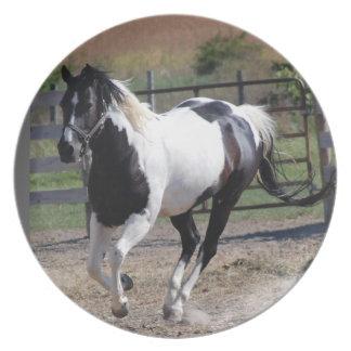 Beautiful Paint Pinto Horse Melamine Plate