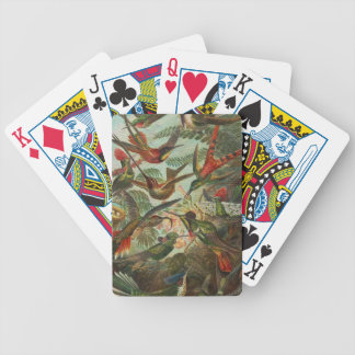 Beautiful Painted Vintage Birds Bicycle Playing Cards