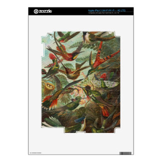 Beautiful Painted Vintage Birds Decal For iPad 3