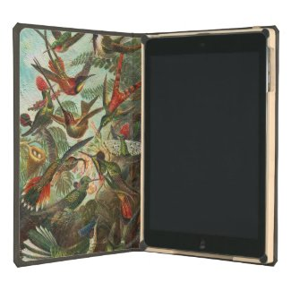 Beautiful Painted Vintage Birds iPad Air Cover