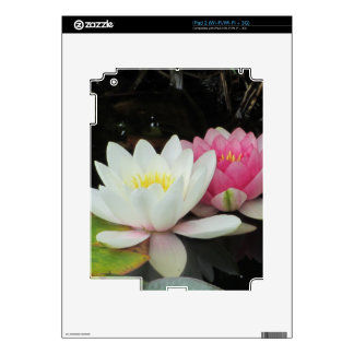 BEAUTIFUL PAIR by SHARON SHARPE iPad 2 Decals