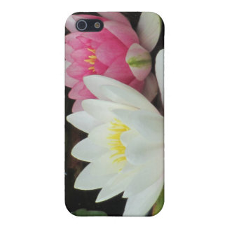 BEAUTIFUL PAIR by SHARON SHARPE iPhone SE/5/5s Cover