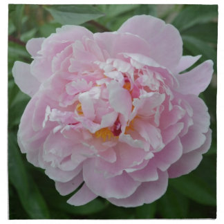 Beautiful Pale Pink Peony Flower - Floral Garden Napkins