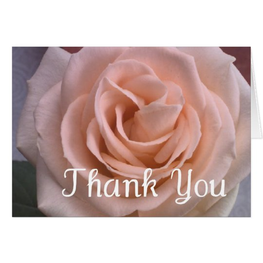 Beautiful Pale Pink Rose Thank You Card