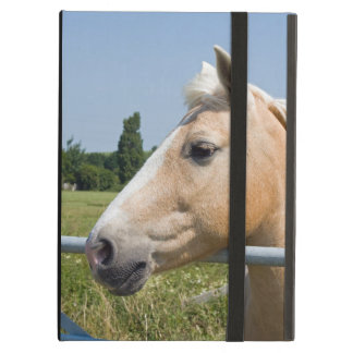 Beautiful Palomino Horse iPad Air Case