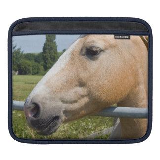 Beautiful Palomino Horse iPad Sleeve