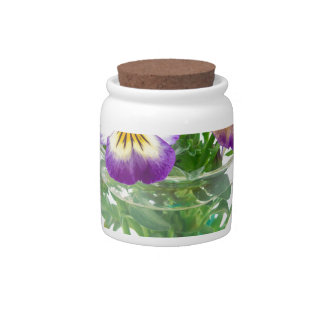 beautiful pansy flowers isolated in a cup candy jar