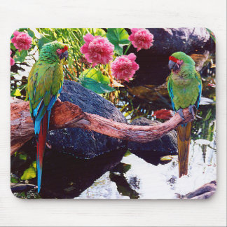 Beautiful Parrots with Pink Flowers - Mouse Pad