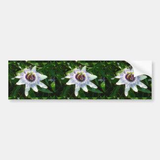 Beautiful Passion Flower With Garden Background Car Bumper Sticker