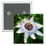Beautiful Passion Flower With Garden Background Pins
