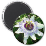 Beautiful Passion Flower With Garden Background Refrigerator Magnet