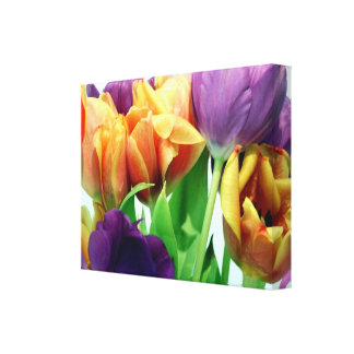 Beautiful Pastel Tulips Wrapped Canvas Print