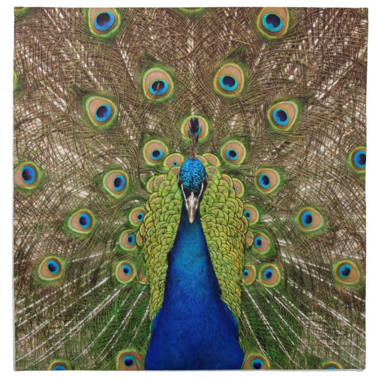 Beautiful peacock and tail feathers print napkin