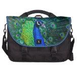 Beautiful Peacock Bag For Laptop