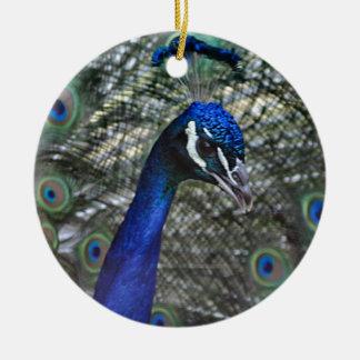 Beautiful peacock ceramic ornament