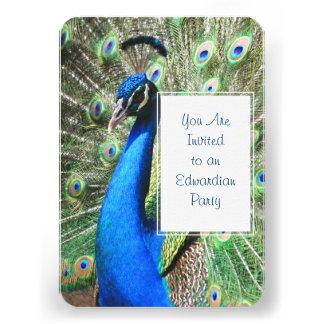 Beautiful Peacock Custom Announcement