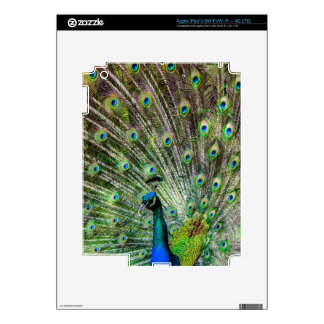 Beautiful Peacock Decals For iPad 3