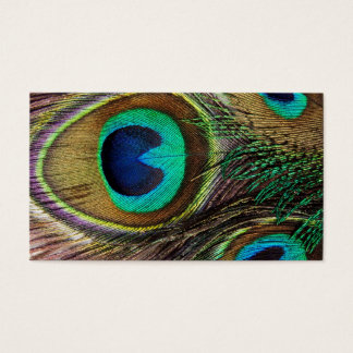 Beautiful Peacock Feathers Business Card