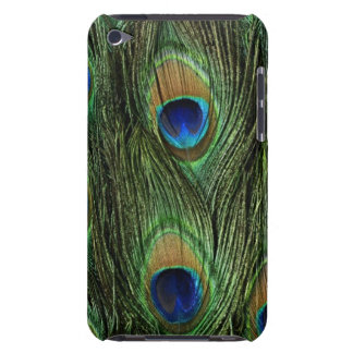 Beautiful Peacock Feathers iPod Touch Cover