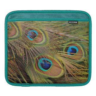 Beautiful Peacock Feathers iPad Sleeve