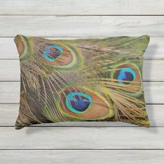 Beautiful Peacock Feathers Outdoor Pillow