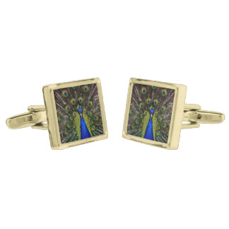 Beautiful Peacock Gold Cufflinks