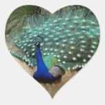 Beautiful Peacock Heart Stickers