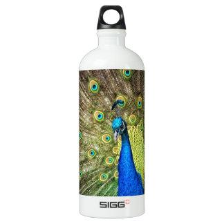 Beautiful Peacock Photo Aluminum Water Bottle