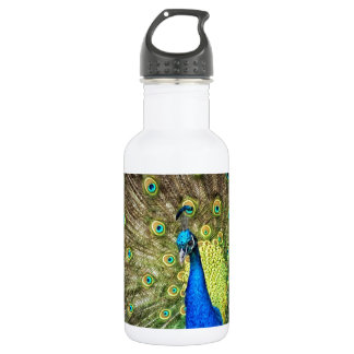 Beautiful Peacock Photo Water Bottle
